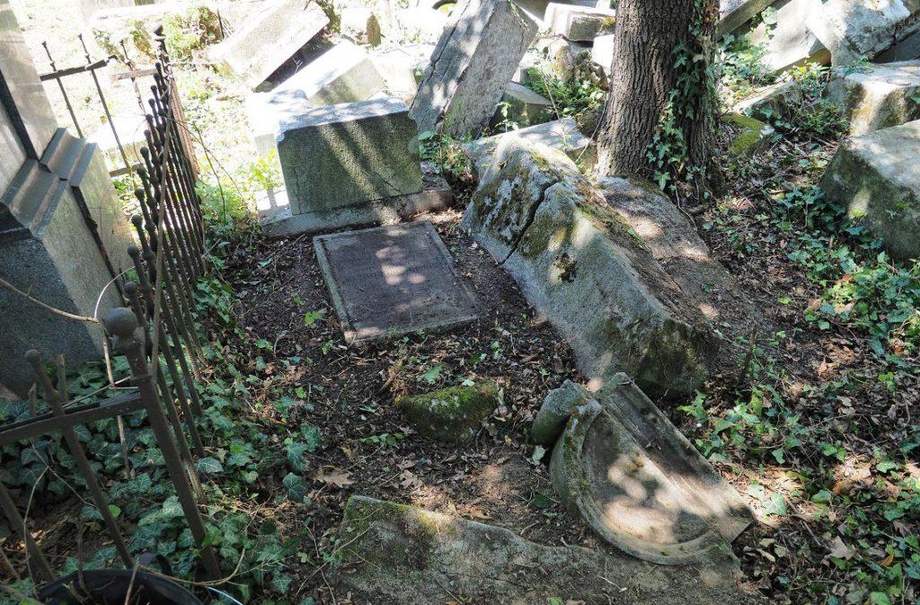 Ein Tag als Freiwillige am jüdischen Friedhof Währing!
